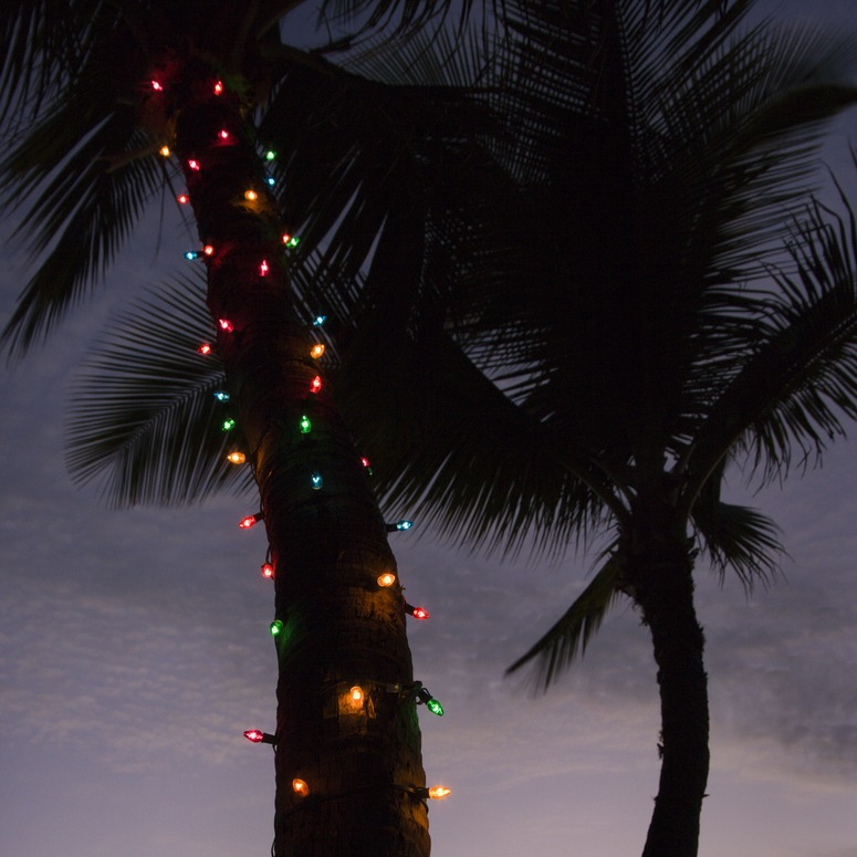 Christmas light installation Solana Beach
